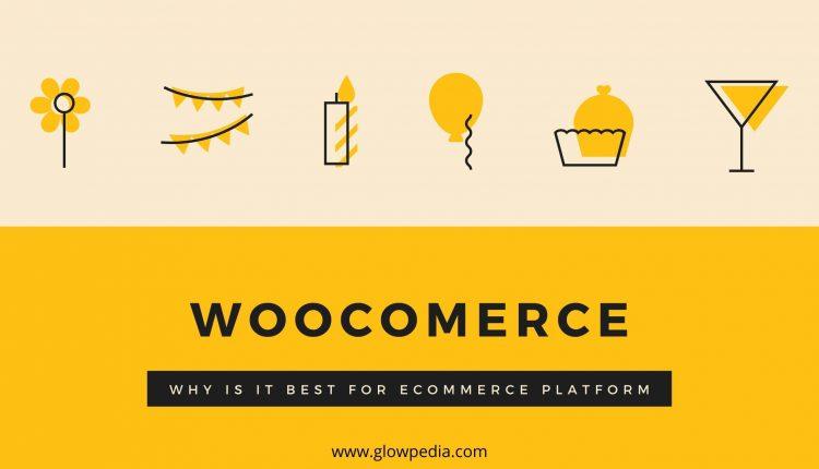 Woocommerce for Ecommerce Websites